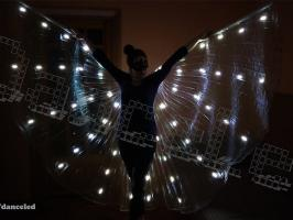 Светодиодные крылья ''Легкость''